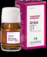 Lehning Arnica Complexe N° 1 Solution Buvable En Gouttes Fl/30ml à OULLINS