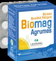 Lehning Biomag Comprimés à Croquer Agrumes B/90 à OULLINS