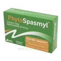 Phytospasmyl Caps B/60 à OULLINS