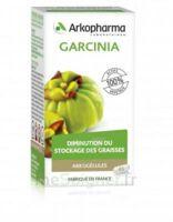 Arkogélules Garcinia Gélules Fl/45 à OULLINS