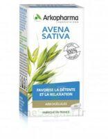 Arkogélules Avena Sativa Gélules Fl/45 à OULLINS