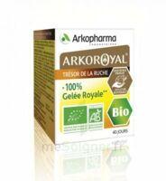 Arkoroyal 100% Gelée Royale Bio Gelée Pot/40g à OULLINS