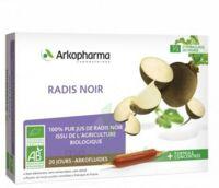 Arkofluide Bio Ultraextract Radis Noir Solution Buvable 20 Ampoules/10ml à OULLINS