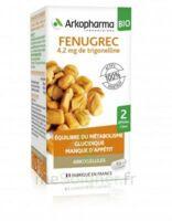 Arkogélules Fenugrec Bio Gélules Fl/40 à OULLINS