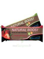 Ergysport Natural Boost Purée Poire Stick/30g à OULLINS