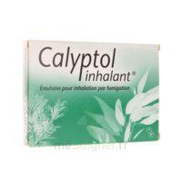 Calyptol Inhalant, émulsion Pour Inhalation Par Fumigation à OULLINS