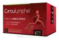 Santé Verte Circulymphe Triple Actions B/60 à OULLINS