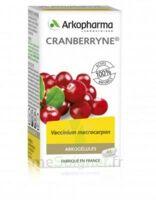 Arkogélules Cranberryne Gélules Fl/45 à OULLINS