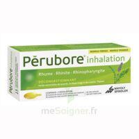 Perubore Caps Inhalation Par Vapeur Inhalation Plq/15 à OULLINS