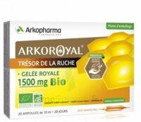 Arkoroyal Gelée Royale Bio 1500 Mg Solution Buvable 20 Ampoules/10ml à OULLINS