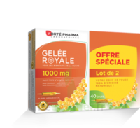 Forte Pharma Gelée Royale 1000 Mg Solution Buvable 2*b/20 Ampoules/10ml à OULLINS