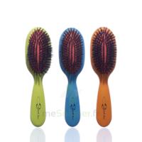 Cartel Brosse Cheveux Pneumatique Sanglier /1 à OULLINS