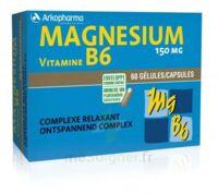 Arkovital Magnésium Vitamine B6 Gélules B/120 à OULLINS