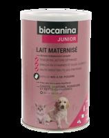Biocanina Lait Poudre Maternisé B/400g à OULLINS