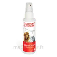 Clément Thékan Caniderma Solution Externe Cicatrisant Spray/125ml à OULLINS