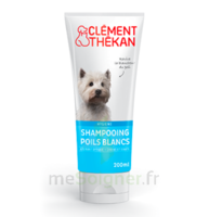 Clément Thékan Shampooing Poils Blancs T/200ml à OULLINS