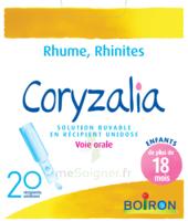 Boiron Coryzalia Solution Buvable Unidose B/20 à OULLINS