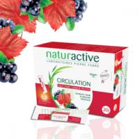 Naturactive Phytothérapie Fluides Solution Buvable Circulation 2b/20 Sticks/10ml à OULLINS