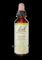 Fleurs De Bach® Original Olive - 20 Ml à OULLINS