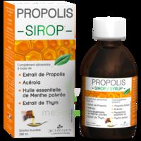 3 Chenes Propolis Sirop Fl/200ml à OULLINS