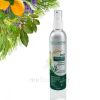 Naturactive Assaini'spray 200ml à OULLINS