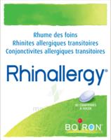 Boiron Rhinallergy Comprimés B/40 à OULLINS
