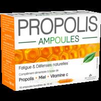3 Chenes Propolis Solution Buvable 10 Ampoules/10ml à OULLINS