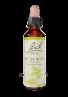 Fleurs De Bach® Original Wild Rose - 20 Ml à OULLINS