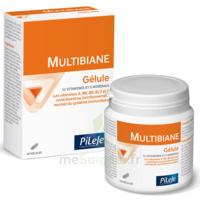 Pileje Multibiane 120 Gélules à OULLINS